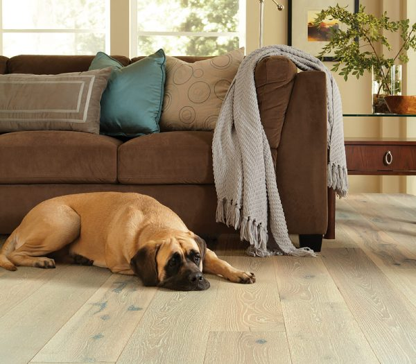 Waterproof hardwood flooring in Columbus, Ohio perfect for pets